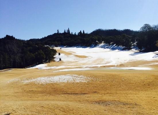 積雪の状況報告